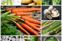VERDURAS LLENAS DE NUTRIENTES Y BENEFICIOS PARA NUESTRO ORGANISMO