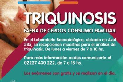 TRIQUINOSIS: PAUTAS PARA PRODUCTORES PORCINOS