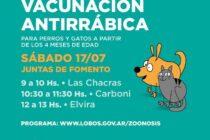 CONTINÚA LA VACUNACIÓN DE PERROS Y GATOS
